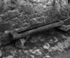 © Roger Choplain, Roland Maston, Région Auvergne - Inventaire général du Patrimoine culturel, ADAGP - Léotoing, lagarde, auge tailléé dans un tronc.