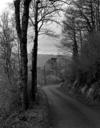 © Roger Choplain, Roland Maston, Région Auvergne - Inventaire général du Patrimoine culturel, ADAGP - SAINT ETIENNE DE CARLAT Bourg EGLISE PAROISSIALE SAINT ETIENNE. Vue de situation prise de l'Est.